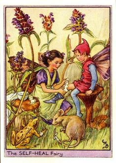 "Cicely Mary Barker ""The Self-Heal Fairy"" (English illustrator 1875-1973)"