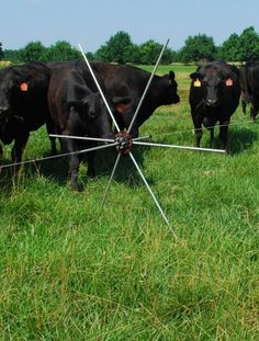 A great invention for speedy moving of electrified fencing for mob or intensive grazing.