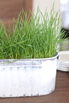 I created a centerpiece for our new kitchen island, and I thought I'd share the steps with you. It is a super-simple way of creating a centerpiece for spring an