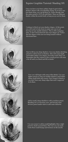 How to draw horse nose. Tutorial: Equine Shading by Onlooker1234