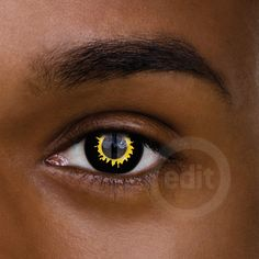 Wolf Contact Lenses   5200_daily_wolf_1000x1000.jpg