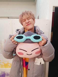 Big Hoshi and little Hoshi :):) cute qua diii Wonwoo, Jeonghan, Seungkwan, Seventeen Memes, Hoshi Seventeen, Seventeen Debut, Pledis Seventeen, Carat Seventeen, Jung So Min