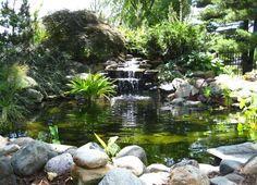 Cascade bassin de jardin 27 id es cr er votre havre de paix water features - Jardin zen avec bassin ...