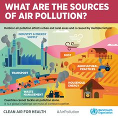 Infographic: What are the sources of air pollution? Air Pollution Facts, Air Pollution Project, Air Pollution Poster, Ocean Pollution, Save Environment, World Environment Day, Environment Quotes, Healthy Environment, Environmental Justice