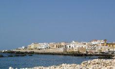 """Il #Salento e la bontà dei ricci di mare [itinerario] --> partiamo da #Gallipoli: perla del mediterraneo, antica città di pescatori e marinai.  Posto preferito per raccogliere i ricci dal pescatore Damiano Barba - detto """"Damianu ti rizzi"""" dagli amici - è il """"canneto"""" di Gallipoli --> http://www.allyoucanitaly.it/blog/il-Salento-e-la-bonta-dei-ricci-di-mare"""