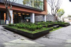 Galeria - Paisagismo no Campus Corporativo Coyoacán / DLC Arquitectos + Colonnier y Asociados - 17
