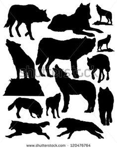 Wolf Photos et images de stock   Shutterstock