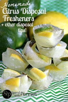 Homemade Citrus Disposal Fresheners + how to keep your disposal sharp and clean!!!