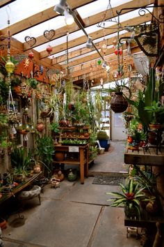 YES! this is how i want my green house! - but with Way more herbs and maybe more hanging stuff...a fountain would be nice :P lol