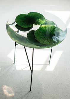 Float is an exquisite illusion for the home – a levitating lotus pond supported by a trio of intertwining stems. Each table is unique, containing an arrangement of lotus leaves sourced from South East Asia. Behaving like a giant plano-convex lens.