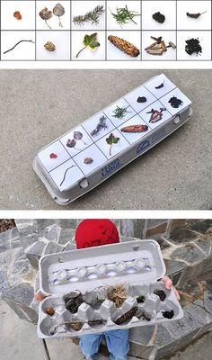 Scavenger hunt egg carton collection + the printables for other scavenger hunts! - Самый сок! - 60 идей летних развлечений c ребенком