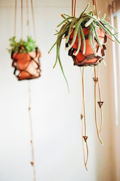leather plant holders by steve soria.