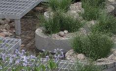 Image result for chelsea garden designs 2013