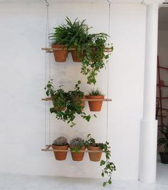 8 cool ideas for patio gardening