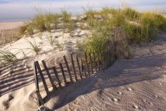 Grew up on Long Island and loved going to Jones Beach!!  Beautiful white sand.    Great concerts....good times.