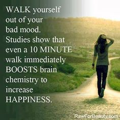 You can't run from your problems, but maybe taking them for a walk will help.