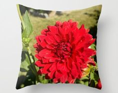 Red Dahlia, Throw Pillow Cover, Red Flower, Red Toss Pillow, Red Flower Cushion, Red Accent Pillow, Flower Accent Pillow, Red Toss Cushion by laineydesigns. Explore more products on http://laineydesigns.etsy.com