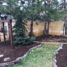 Put up some reed fencing to try to get a bit more privacy in the yard. Need to order more but I think it's looking good  #reedfence #gardening #southdakotagarden