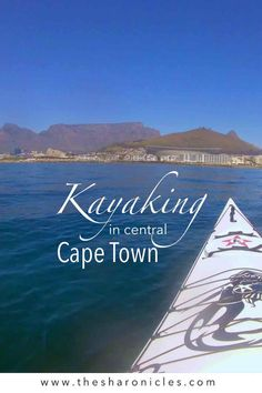 Everything you need to know about kayaking with dolphins close to the centre of Cape Town. Cape Town, Kayaking, Travel Humor, Us Travel, Dolphins, Passport, Travel Photos, Traveling By Yourself, Centre