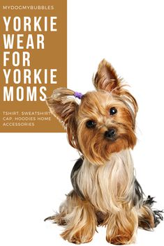 A dog wear collection from MydogMybubbles made for Yorkie moms and Yorkie Terrier lovers with t-shirt, hoodie, sweatshirts.  #mydogmybubbles #yorkie #yorkiewear #yorkieshirt #yorkiemomshirt #yorkiemom #yorkshireterrier #yorkieterrier #yorkielover #yorkieclothes