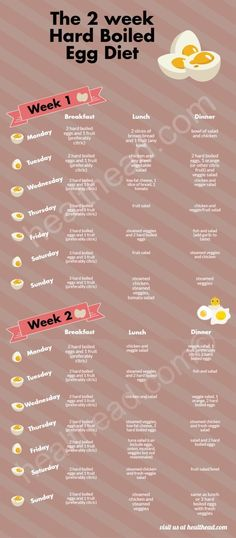 The Hard Boiled Egg Diet 2 Week Plan InfoGraphic