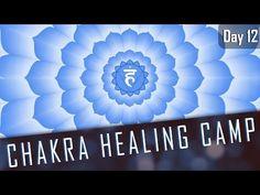 THROAT CHAKRA AFFIRMATIONS | 14 Day Chakra Healing Camp Day#12 - YouTube Chakra Meditation, Meditation Music, Guided Meditation, Chakra Healing, Crystal Healing, Healing Camp, Purpose Quotes, Chakra Alignment, Chakra Affirmations