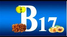 Vitamina b17 Y sus efectos sobre el organismo