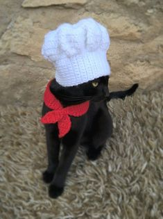 82925023d22 48 Best Cats In Hats - Etsy Shop images in 2019