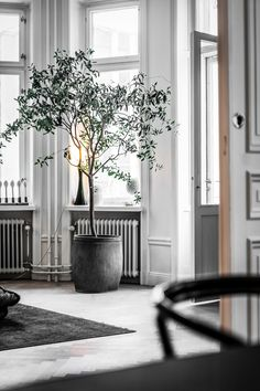 interior styling | entryway | greys and whites | home design | #entryway #grey