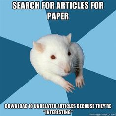 Psychology Major Rat. I do this all the time! I have so much to read by the end of a project!