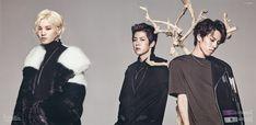 Infinite sungjong sungyeol dongwoo