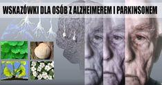 4 potężne zioła regenerujące mózg – wskazówki dla osób z alzheimerem i parkinsonem – Motywator Dietetyczny