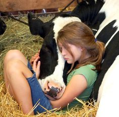 cows <3 Love and trust...I love this pic. It reminds me of Jocelyn and Mercadez they both are always loving of animals. I love this photo.