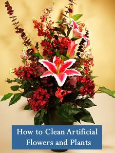 cleaning artificial plants home tips pinterest trees silk plants and artificial plants. Black Bedroom Furniture Sets. Home Design Ideas