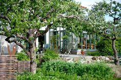 greenhouse:MAGDALENA BJÖRNSDOTTER