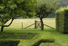 Amazing hedgework