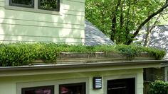 A green roof of sedums, phlox, herbs, wild strawberries and other plants reduces stormwater runoff and energy costs on this renovated Atlanta home