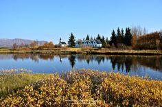 #Þingvellir National Park  #Iceland #autumn