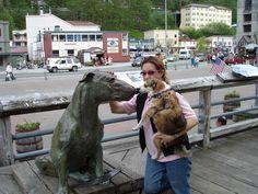 Собака никогда не ошибалась. Однажды дали неверную информацию и ожидающие люди собрались не в том месте, Пэтси же побежала к правильному доку.Прожив 13 лет, 30 марта 1942 она умерла.Через 50 лет, 3 июля 1992 года на той самой пристани, куда всегда прибегала Пэтси Энн установили бронзовую статую в память о ней. Её автор - Анна Берк Харрис из Нью-Мехико.