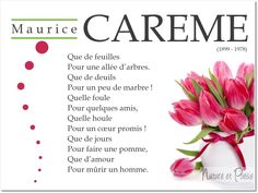 Maurice Careme, Learn A New Language, Victor Hugo, Texts, Qoutes, Education, Learning, Words, Phrases