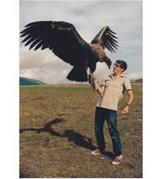 The California Condor (Gymnogyps californianus) is a New World vulture, the largest North American land bird. I WOULD DIE Pretty Birds, Beautiful Birds, Animals Beautiful, All Birds, Birds Of Prey, Scary Birds, Photo Aigle, Rapace Diurne, Animals And Pets