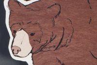 Memoli Ward - Wild Animal Illustrations