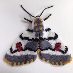 117 отметок «Нравится», 9 комментариев — Max Alexander (@maxsworld) в Instagram: «Moth week day 3. African cherry spot moth (diaphone eumela). I love it's little bee striped body an…»