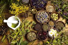 "cosmic-rebirth: "" An array of healing herbs. """