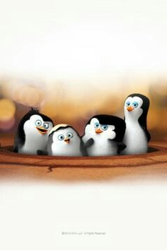 Baby penguins of Madagascar