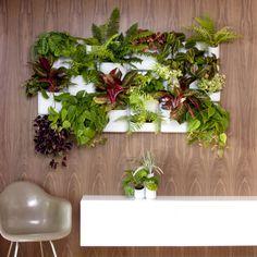 Urbio Modular Wall Garden #indoorgarden #plants #herbs #organizer #homedecor