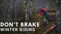 Mtb, E Mountain Bike, Trail, News, Tips, Bicycle, Autumn, Mountain Biking
