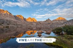 Special Report: Wilderness: Our Enduring American Legacy - The Wilderness Act turns 50