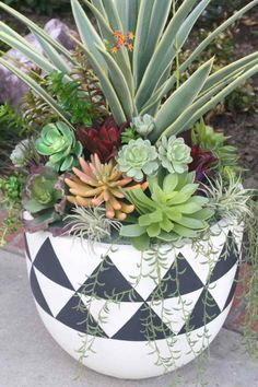 48 Awesome Repurposed Succulent Planters Ideas - Succulents are perfect plants for dry gardens and are easy to root and grow. Once you learn how easy it is to propagate succulent plants, it's a great. Succulent Outdoor, Succulent Planter Diy, Succulent Gardening, Succulent Arrangements, Outdoor Plants, Garden Pots, Indoor Herbs, Succulent Ideas, Planter Ideas