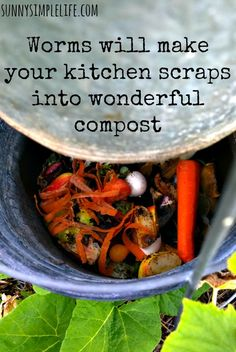 How To Make An Inground Composter For Your Garden   Sunny Simple Life